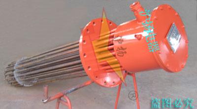 防爆-法兰式(插入式)电加热器