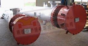 防爆氢气电加热管